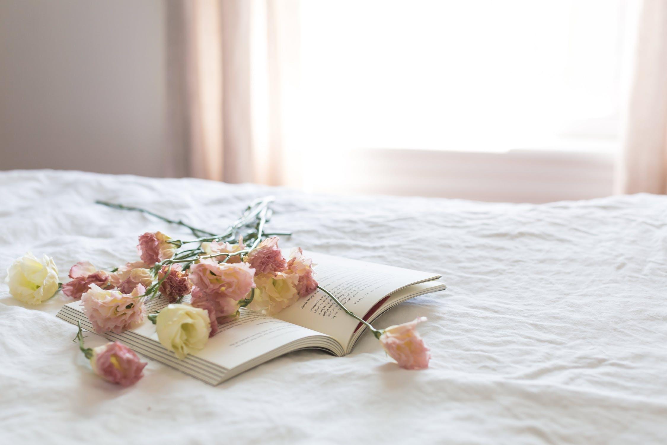 linge de lit la boutique des proprios